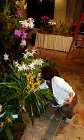 2005_huntington_show_9_finishingtouches.jpg